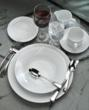 Oneida Acclivity Flatware with Schoenwald Dinnerware